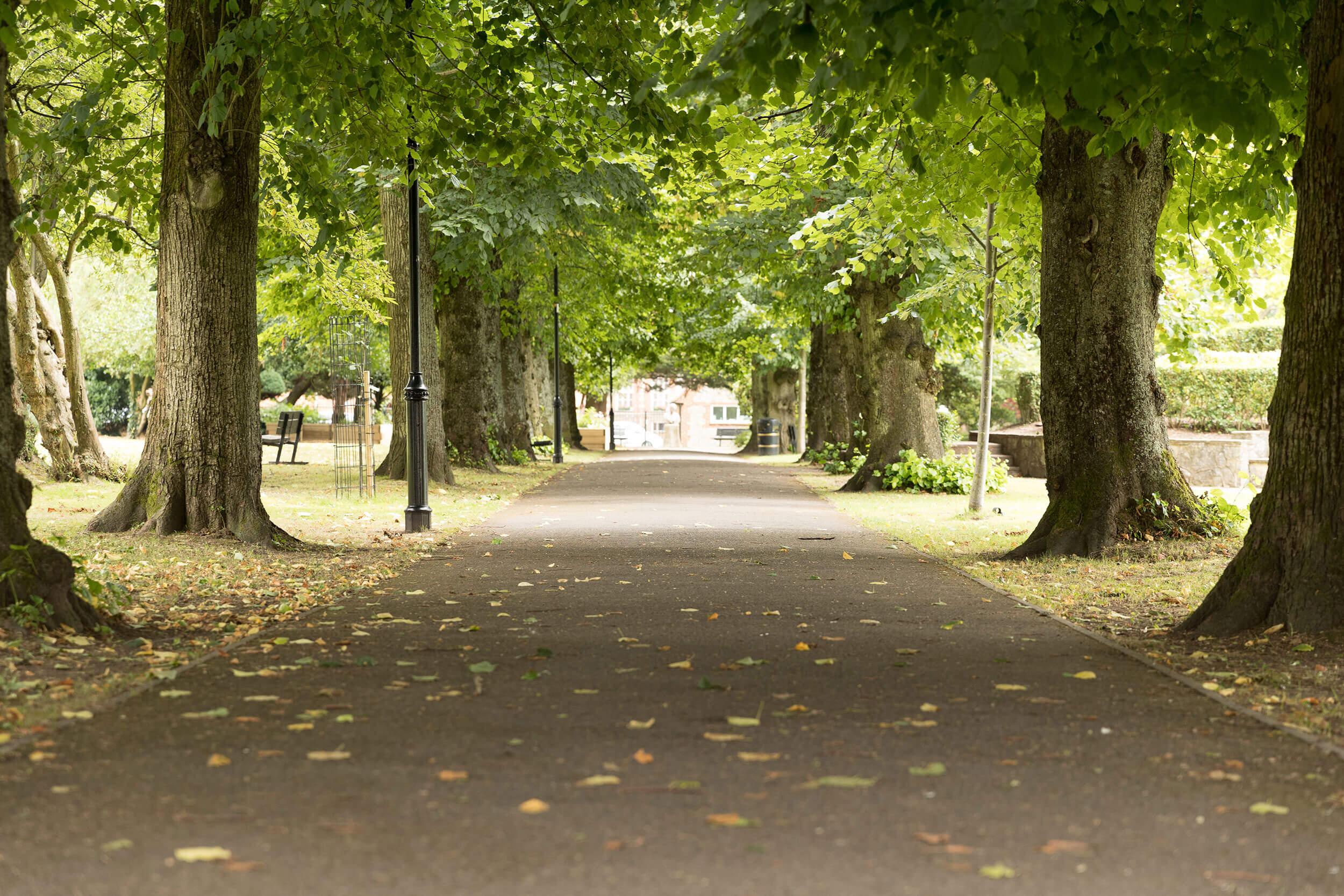 alton park image